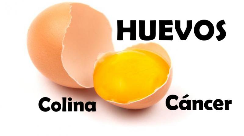 qué parte del huevo es perjudicial para la próstata