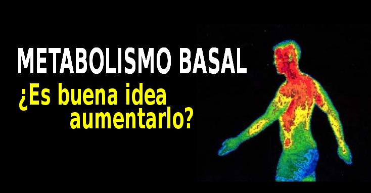 METABOLISMO BASAL Y VEJEZ: PORQUE NO DEBES DE AUMENTAR TU..